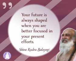 Your future is always shaped when you are better focused in your present efforts
