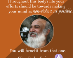 Your efforts should be towards making your mind as non-violent as possible