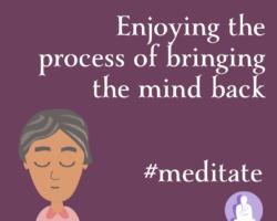 Enjoying the process of bringing the mind back