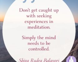 Don't get caught up with seeking experiences in meditation